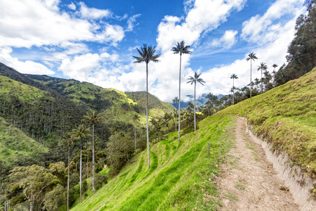 A trail into the distance on the top of a dramatic valley in the Andean mountains in Tolima, Colombia.