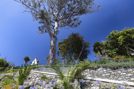 A path up to the Sancta Maria Chapel in the Funchal Botanical Gardens on Madeira, Portugal.