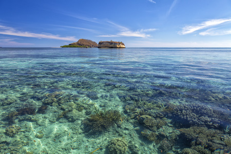 Coral and a small island in the Seventeen Island National Park, Indonesia.