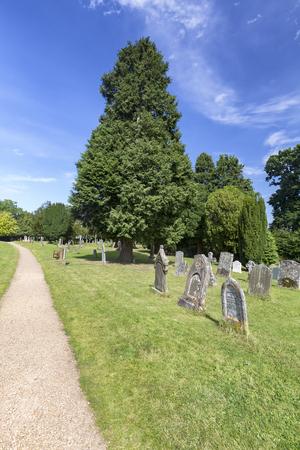 The Saxon Sanctuary cemetery in England. Archivio Fotografico - 123571818