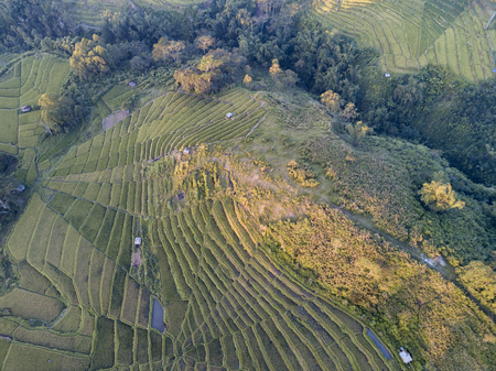 Aerial view of sunset light hitting rice terraces adjacent to the town of Ruteng, Indonesia. 版權商用圖片