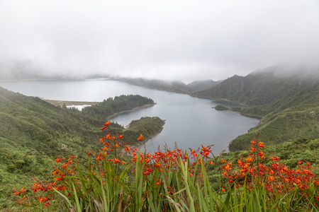 Lagoa do Fogo with beautiful red flowers on a misty day in the Azores. Standard-Bild