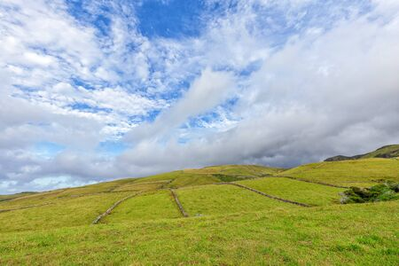 Grazing land in the northern part of Flores island in the Azores.