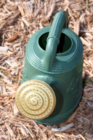Green watering can on mulch