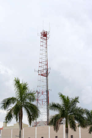 Radio tower on building with palm trees Stock Photo
