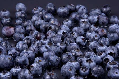 edibles: Mirtilli su sfondo nero  Archivio Fotografico