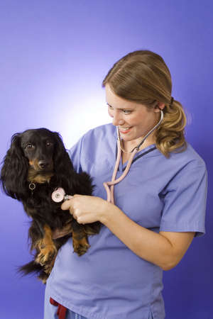 Young veterinarian on blue background with a dog Stock Photo