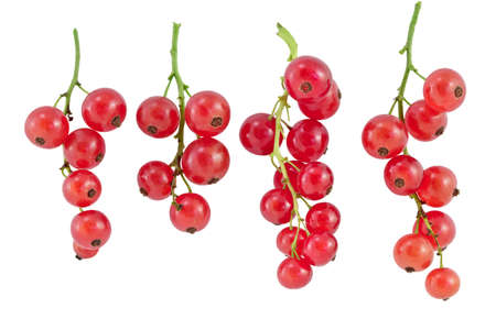 dff image: Old red currant fruit  Isolated on white background