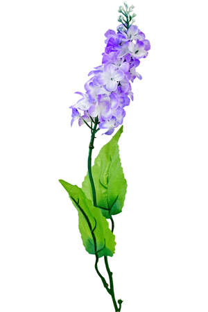 Decorative artificial flower  lilac   Isolated on white    Stock Photo - 16526142