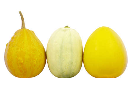 dff image: Three pumpkins isolated on a white background  Isolated with clipping path  DFF image
