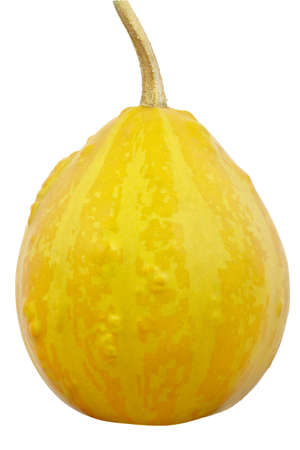 dff image: One pumpkin isolated on a white background  Isolated with clipping path  DFF image