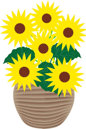 Sunflowers - illustration