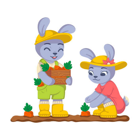 Rabbits are harvesting carrots in the garden. Bunny work in the kailyard. Farming, gardening. Vector children illustration isolated on white background.