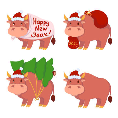 Bull with gifts, carries the Christmas tree. Year of the ox. Happy Cows set. New year and merry christmas vector illustration. Chinese zodiac symbol of the year 2021.