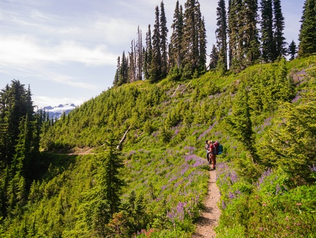 Two women backpacking through field of wildflowers photo
