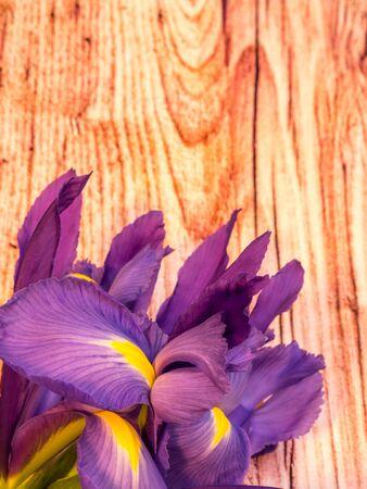 bunch of iris on wooden background, portrait orientation