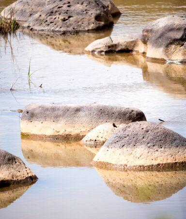isolated rocks in a calm stream, portrait orientation