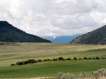 pastoral scene including sheep, high desert hills,distant mountains