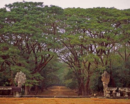 앙코르 와트 사원 경내