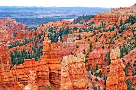 bryce red rocks