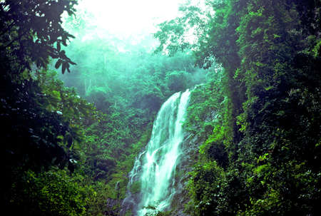 Togo jungle waterfalls Stok Fotoğraf