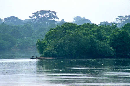 congo river jungle