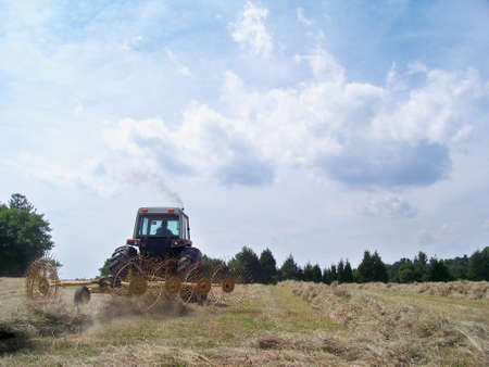 a  hay  rake  at  work
