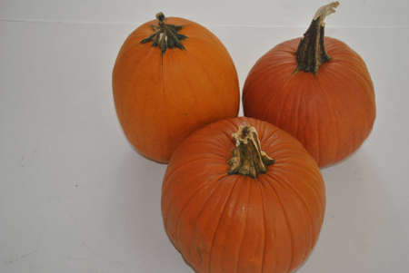 3  pumpkins  for  pies Stock Photo