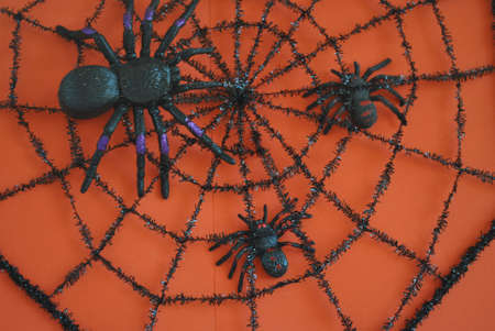 spiders  on  web  on  orange  background