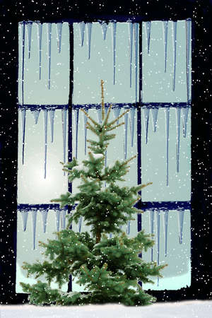 frozen window with icicles on the frame and green  fir tree outside photo