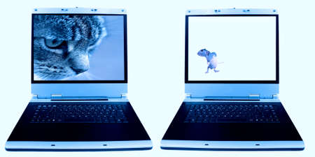 pair of laptops with cat and mouse images photo