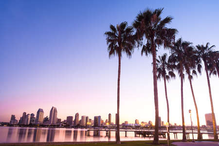california state: California Palm Trees and City of San Diego, California USA  Stock Photo