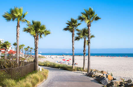 san: San Diego California Beach and Palm Trees, USA Stock Photo