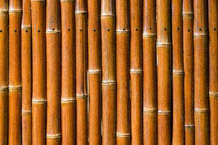 Bamboo Fencing Background Detail  Foto de archivo