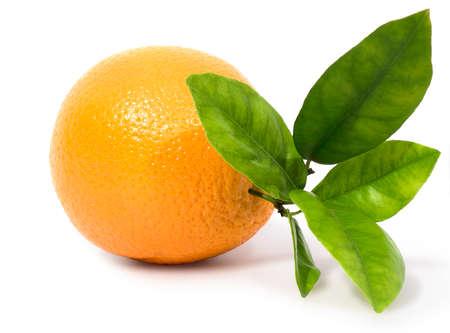 Oranje geïsoleerd op een witte achtergrond Stockfoto