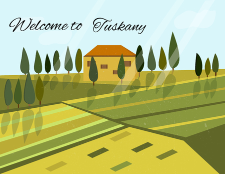 cypress: Italian rural landscape with fields and hills Illustration
