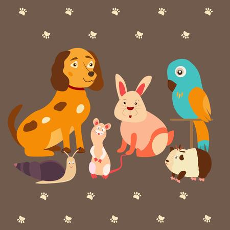 ferret: Images of domestic animals kitten, parrot, dog, snail, rabbit, guinea.