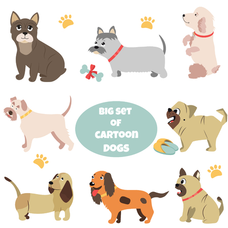 Big set of cartoon dogs of different breeds.