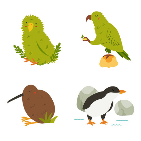 Set of New Zealand birds kea, kakapo, kiwi penguin