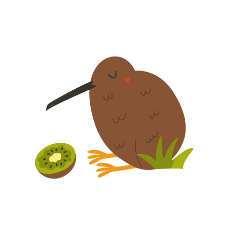 Kiwi bird and kiwi fruit isolated on white background. Cartoon vector illustration