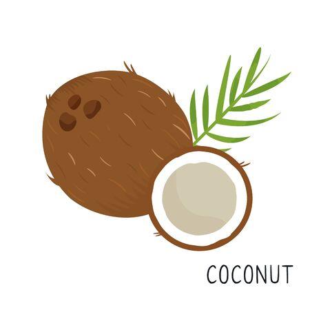 Cartoon flat coconut isolated on white background