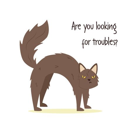 Funny vector illustration of a vicious cat and phrase ARE YOU LOOKING FOR TROUBLE Ilustrace