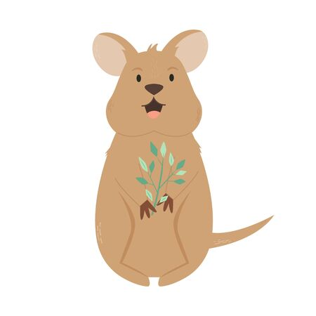 A Cute Australian quokka. Animal character design.