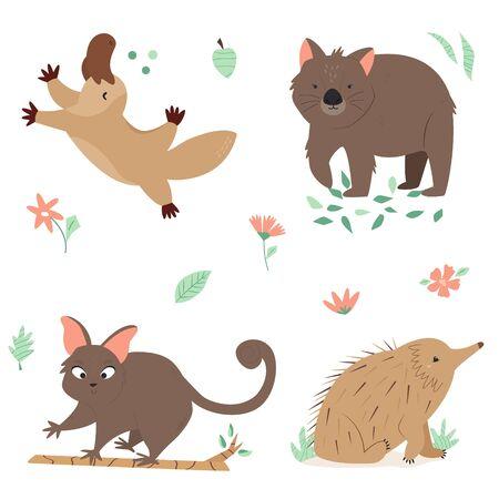 Set of Australian animals platypus, wombat echidna Illustration