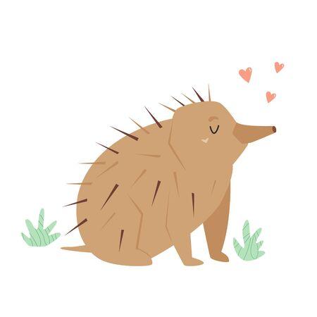 A Cute echidna. Australian animal character design Ilustrace