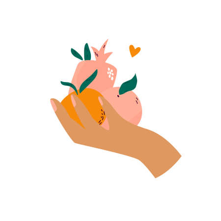Female hand holding different fruits orange, pomegranate, peach. Vector design, illustration