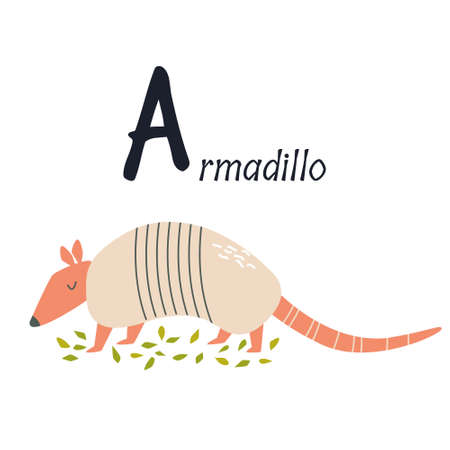 Funny image of armadillo and letter A. Zoo alphabet collection. Vector illustration