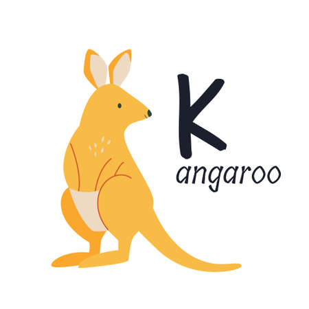 Funny image of a kangaroo and a letter K. Zoo alphabet collection. Vector illustration