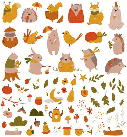 Big set with forest animals and coleection of leaves, fruits, other symbols.