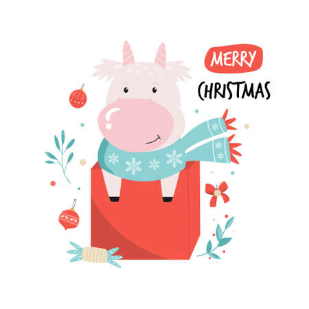 Funny cow in a scarf sitting in a gift box. Merry Christmas postcard